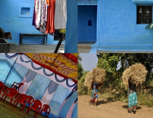India - farm in central india