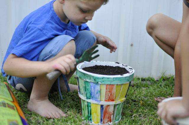 gardening with kids -- how to plant nasturtiums