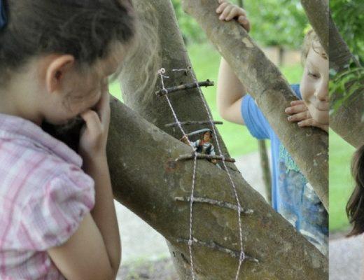 Twig Ladder