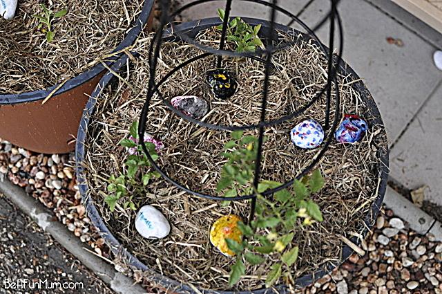 herb rocks for the garden