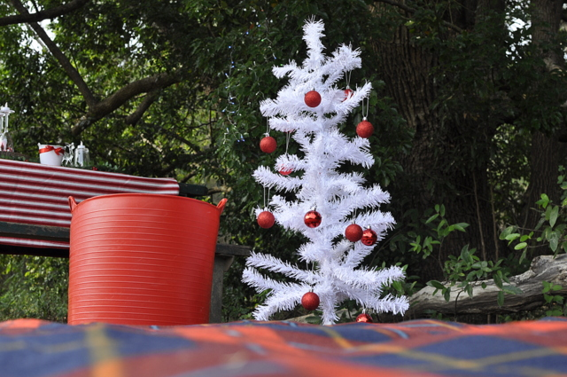 Outdoor Christmas Ideas - a small tree and a picnic mat - beafunmum.com