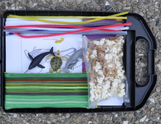 Travel Trail Mix