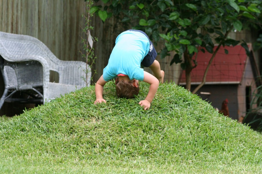 Diy miniature grassy hill in the backyard be a fun mum for Mounding grass