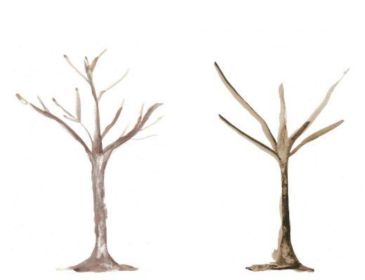 Tree Trunk Templates - Watercolour
