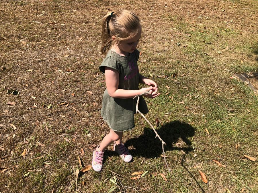 gathering sticks