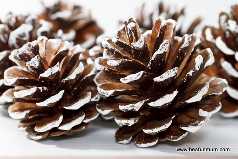 Pine cone crafts be a fun mum for Pine cone christmas ornaments crafts