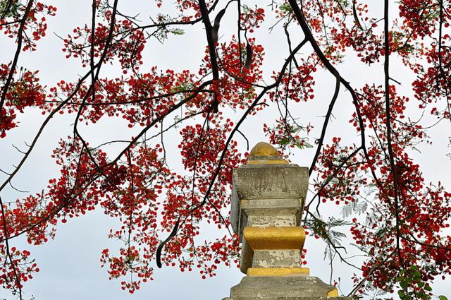 skyline laos