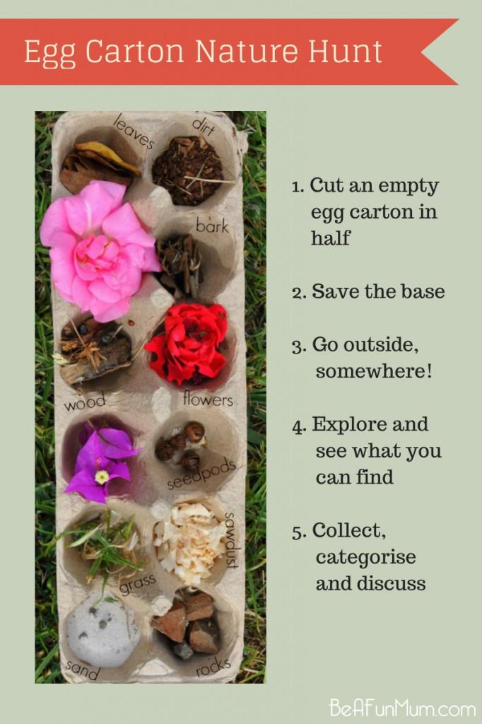 Egg Carton Nature Hunt