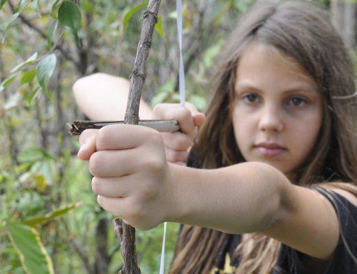 Stick Bow & Arrow
