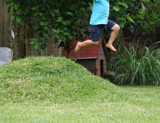 DIY Mini grass mound for the backyard