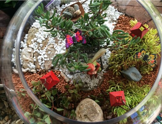 Miniature Terrarium Fairy Garden with wheelbarrow