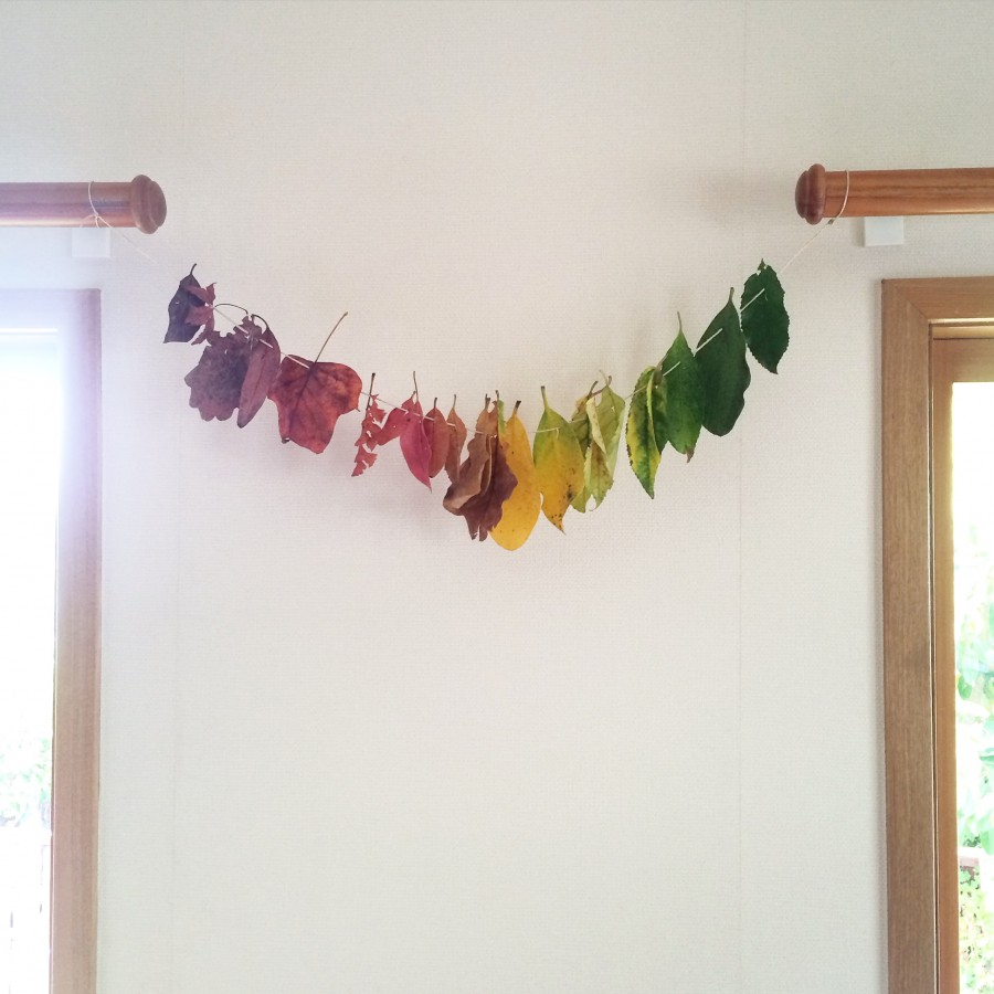 Hang Rainbow Leaves in Autumn