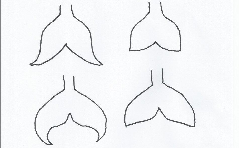 Mermaid tail template – Be A Fun Mum