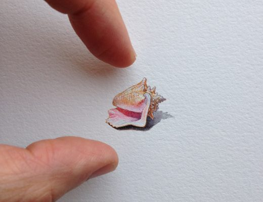mini drawings by Brooke Rothshank