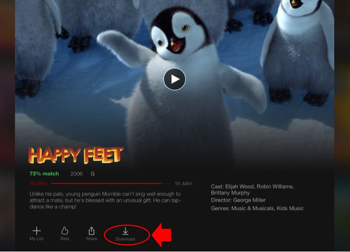 dowloading movies from netflix guide