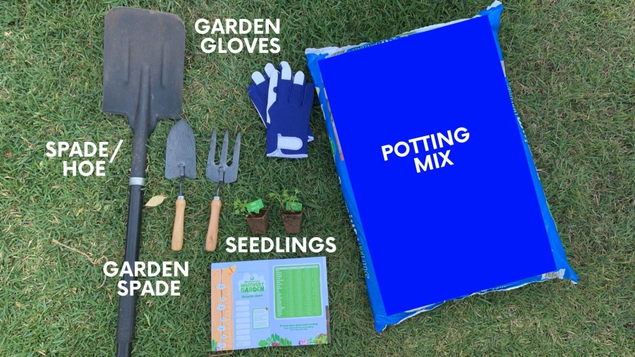 Tools you need for planting a back yard garden