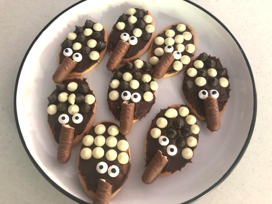 echidna biscuits