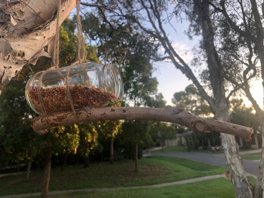 Jar bird feeder