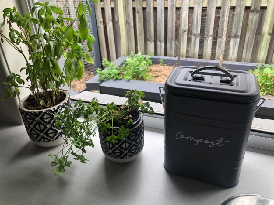 Start a compost